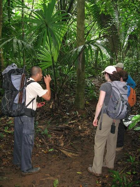 Overnight Jungle Expeditions in Belize