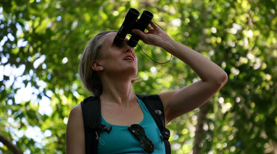 Belize All Inclusive Packages - Birding