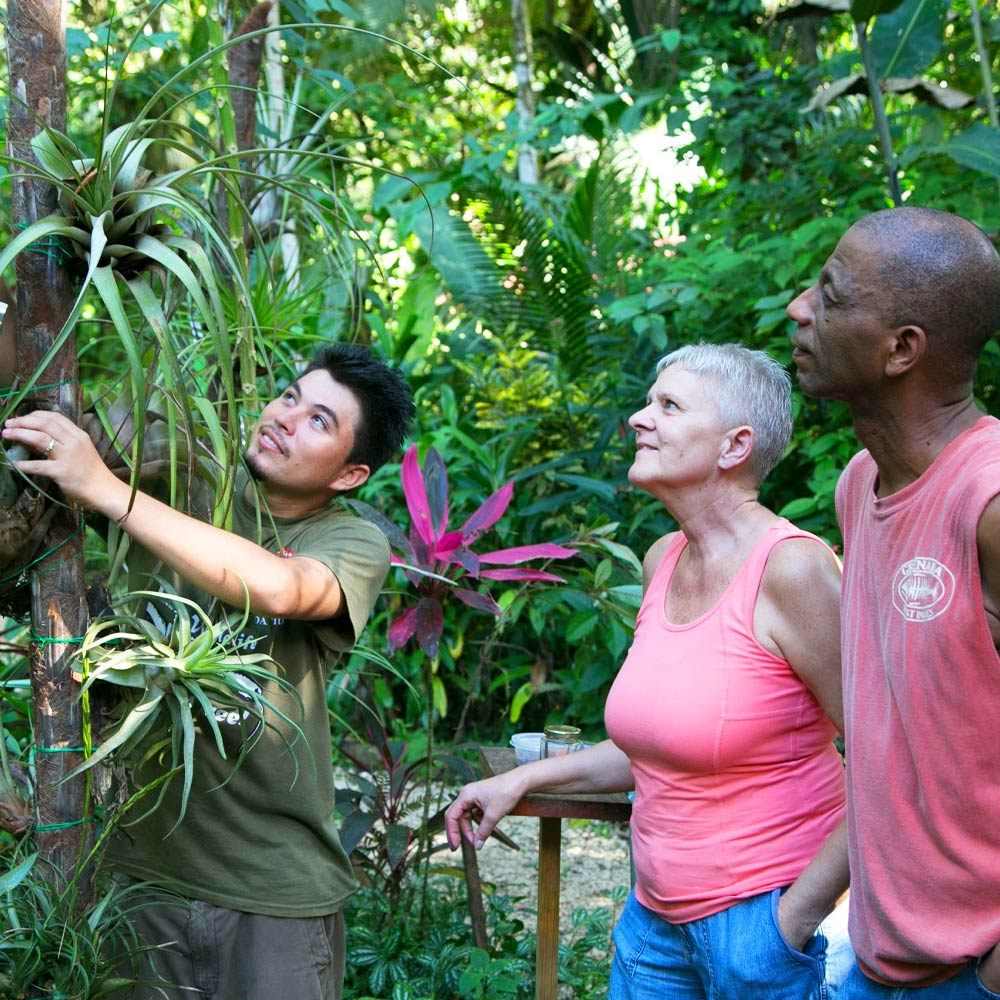 Belize Botanical Gardens