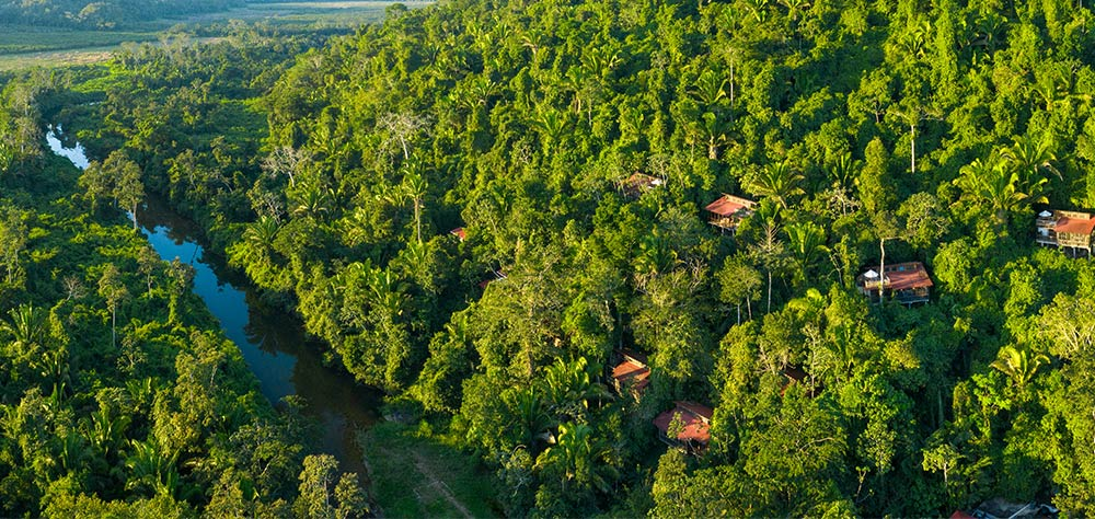 Belize Jungle Canopy View Treehouse