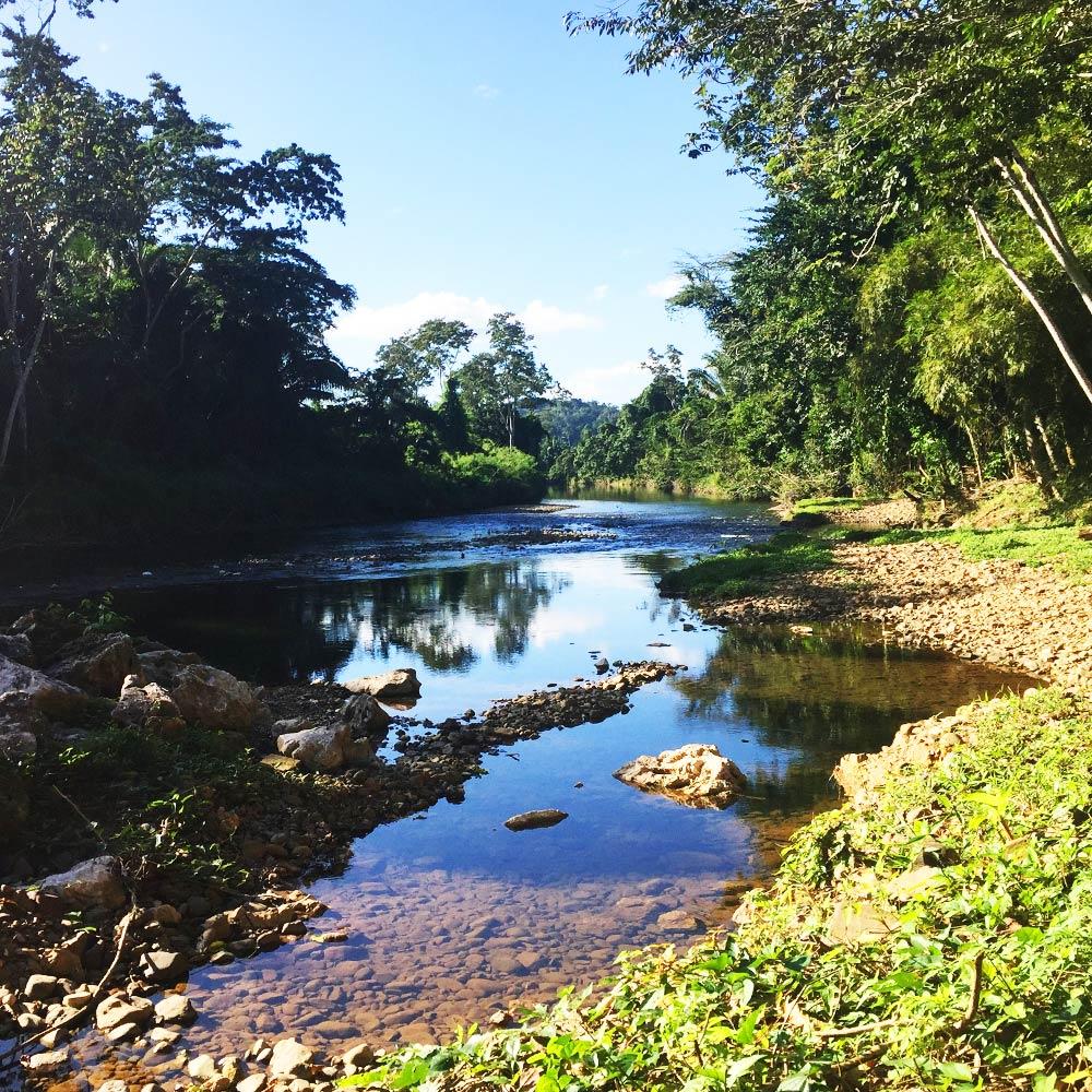 Belize Jungle resort river
